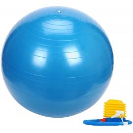 Μπάλα γυμναστικής Pegasus 75 cm (με τρόμπα)