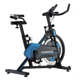 Ποδήλατο Spin Bike Pegasus® SP92171