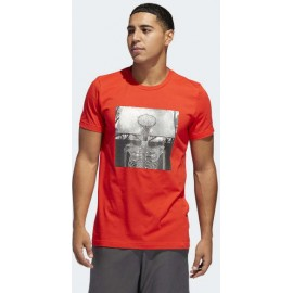 Adidas Skull Ball Tee DX0322 red