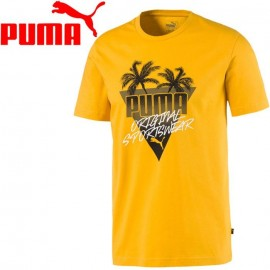 Summer Palms Graphic r. L T-shirt Puma 581917 25