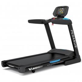 Διάδρομος Γυμναστικής Pegasus® V6 3.0HP AC Δ 358