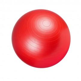 GYM BALL-55cm LIGASPORT